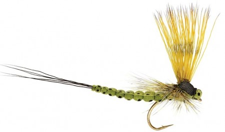 MOHICAN MAYFLY OLIVE #12